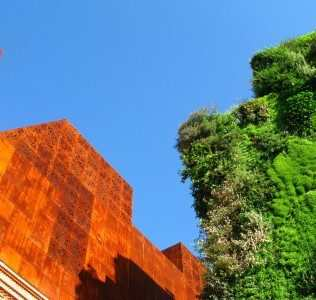 Vertical Green. I Giardini Di Patrick Blanc