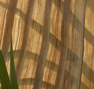 Natural Materials. From Banana Trees, A Valuable And Environmentally Friendly Product