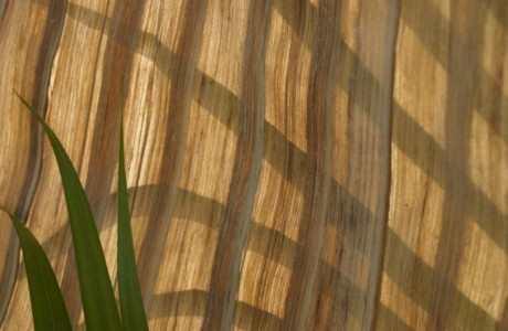 Green Blade Translucide 460×300
