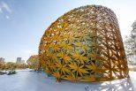 Butterfly Pavilion Alchimag