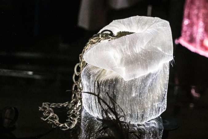 Jellyfish Federico Sangalli