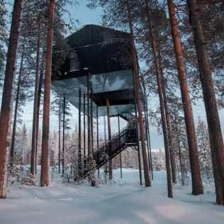 Treehotel: La Settima Stanza Tra Gli Alberi!