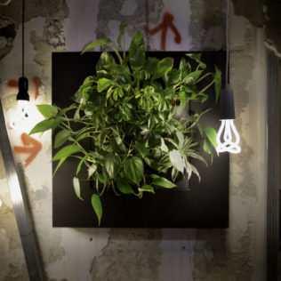 Il Verde Urbano Firmato Roof Gardens: Spazi Iconici, Emotivi, Tattili, Organici